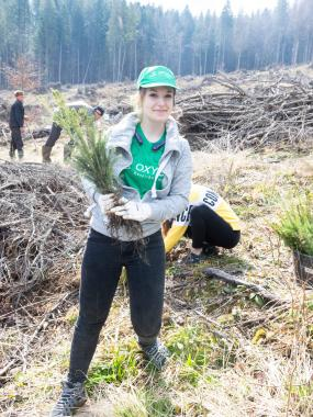ASSIST Software volunteers at reforestation event in Moldovita