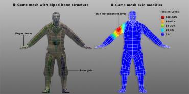 Biped bone and skin modifier